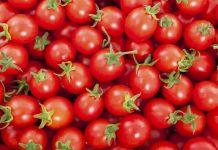no chill tomato