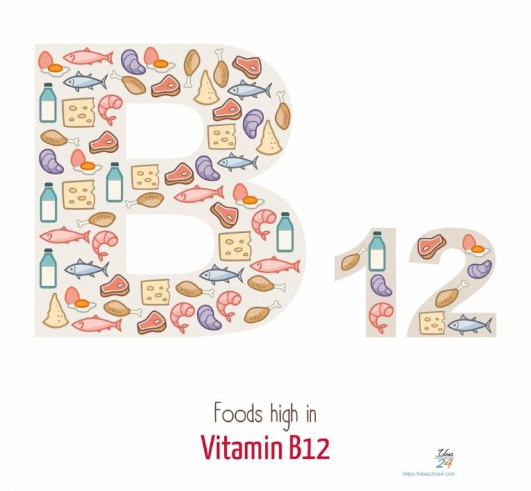 What you need to know about Vitamin B12