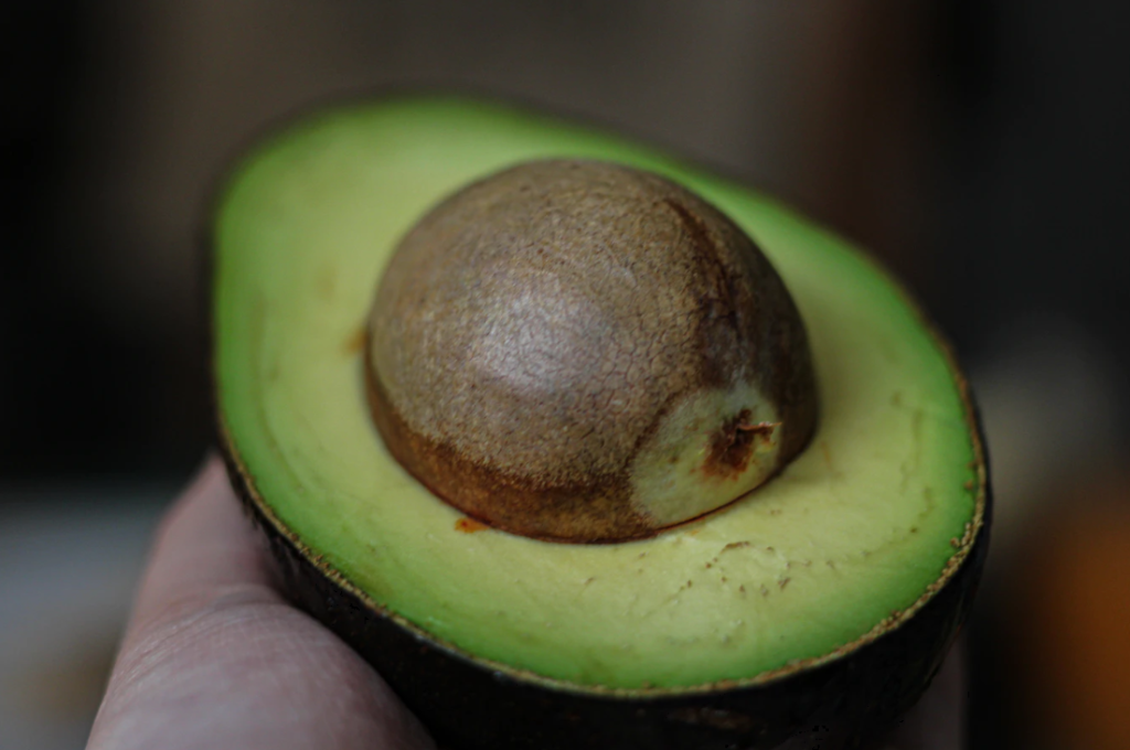 The huge seeds of an avocado are generally accepted to have evolved to prevent digestion by mega-fauna!